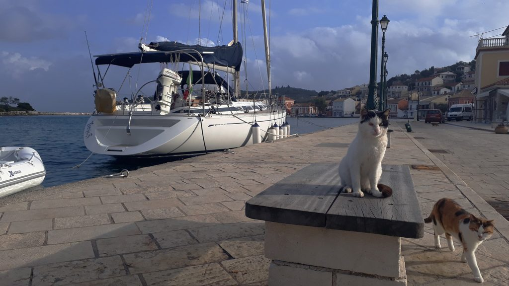 Gatti a Paxos. Vacanze in barca a vela